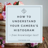 How to Understand your Camera's Histogram and Improve your Food Photography (+ Free Knowledge Test!)